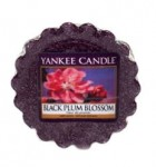 Black Plum Blossom - Wosk - Yankee Candle