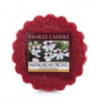 Madagascan Orchid - Wosk - Yankee Candle