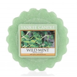 Wild Mint - Wosk - Yankee Candle
